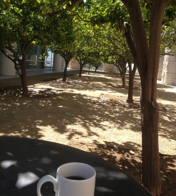 Fig. 3 Coffee break in the researchers' garden at the Getty Research Institute, Los Angeles