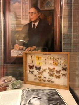Vlinders en schilderij